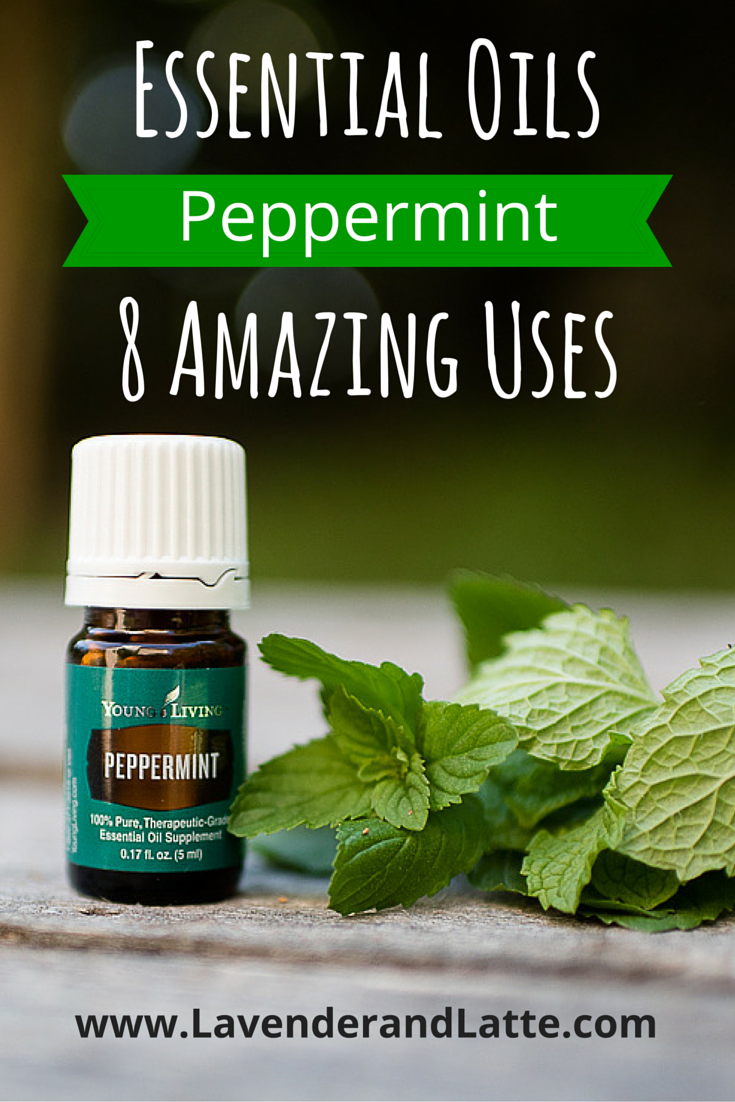 Favorite uses for Peppermint Essential Oil - Lavender and Latte